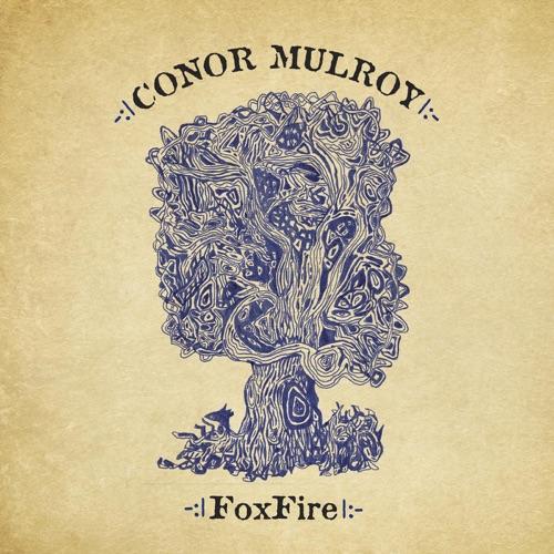 conor-mulroy-foxfire